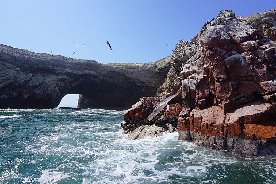 Острова Бальестас и заповедник Паракас - туры в Перу
