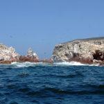 Острова Бальестас и заповедник Паракас